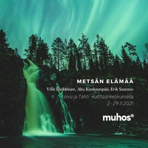 Metsän elämää – Ville Heikkinen, Aku Kankaanpää, Erik Saarnio